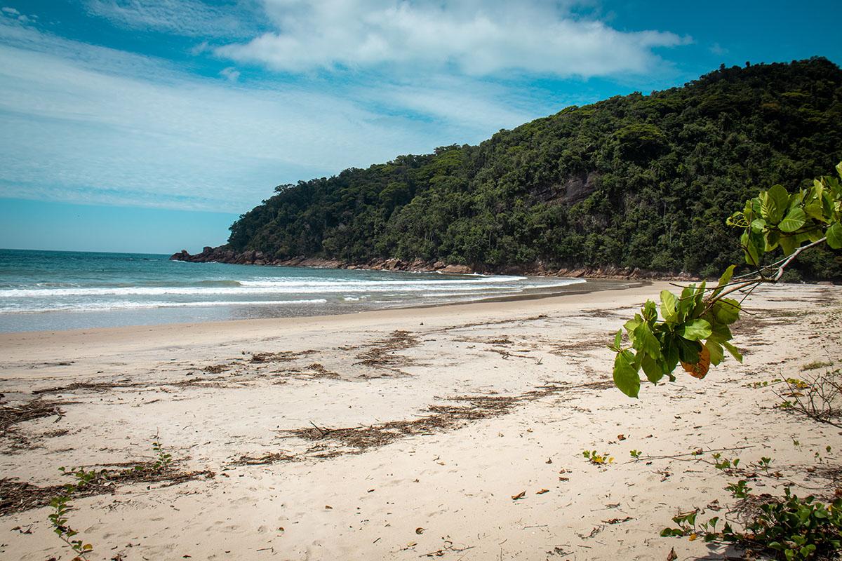 Praia Brava - Ubatuba