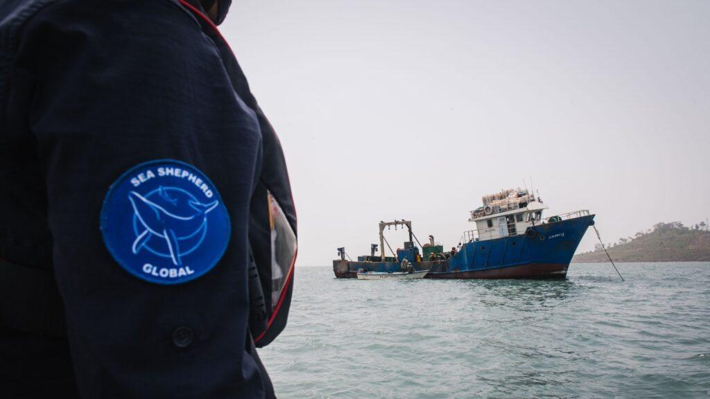 Marinha de Serra Leoa apreende traineiras dentro de área protegida. Foto por Alice Gregoire / Sea Shepherd